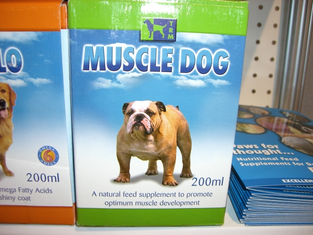 Muscle Dog.JPG