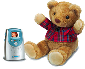 Teddy Bear Surveillance Camera (Image courtesy Sewell Direct)