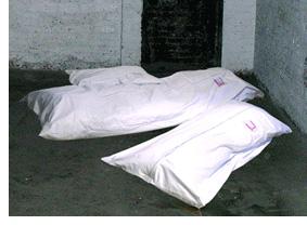 Dead Comfy Bean Bags
