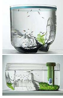 Fish Pod (Images courtesy MoCo Loco)