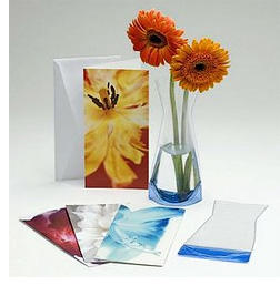 Vase in a Card (Image courtesy Jungseed.com)