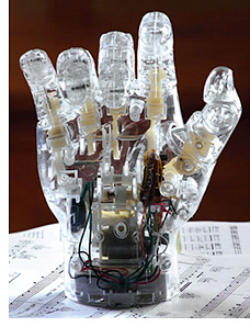 Pianist Hand Concert (Image courtesy What On Earth)