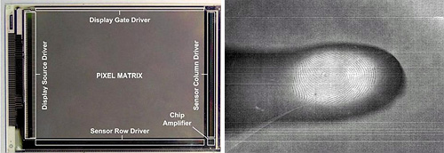 Sharp VGA LCD Sensor Screen (Images courtesy Tech-On!)