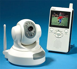 Remote Controlled Pan And Tilt Surveillance Cam (Image courtesy Hammacher Schlemmer)
