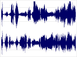 Audio Waveform (Image courtesy Floom.com)