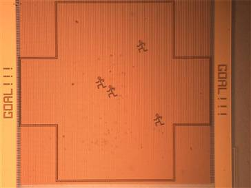 Robocup Nano Field
