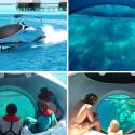 LOOKER 25 Glass Bottom Speed Boat