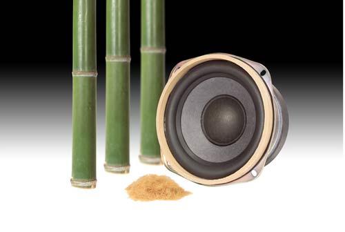 Panasonic Bass Speaker