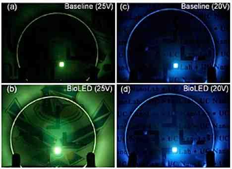 Bio LEDs