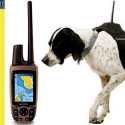 Garmin Astro – Do You Know Where Your Dog Is?