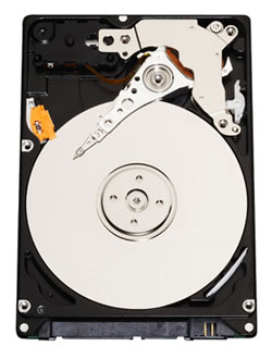 Western Digital Scorpio 320GB HDD (Image via WD)
