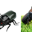 Remote Control Battle Beetles