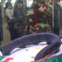 Fishtank Friday: Holiday Edition