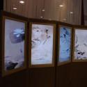 [CES 2008] Hyundai Digital Folding Screen