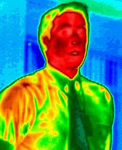 Thermographic Image (Image courtesy LAND Instruments International)