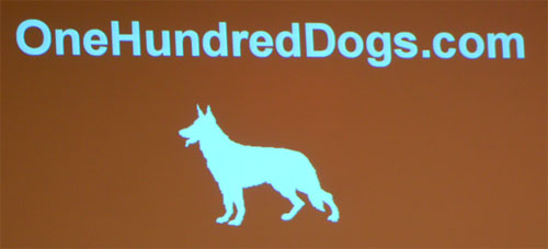 OneHundredDogs