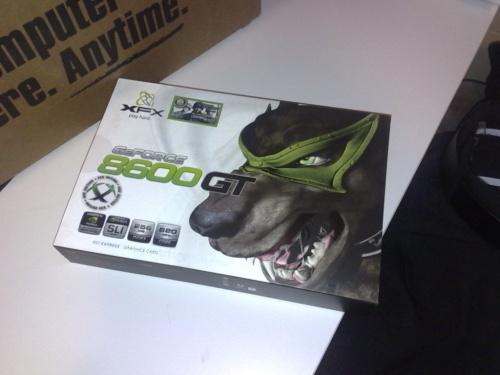 xfx 8600 gt