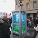 Fishtank Friday: Phone Booth