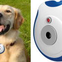 Pet's Eye View Camera – Oh Where, Oh Where Has Your Little Dog Gone?