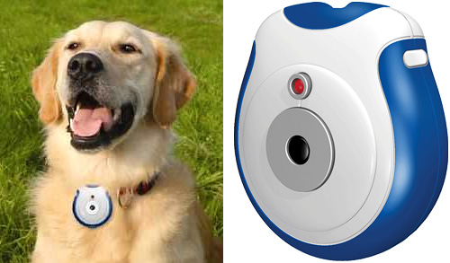 Pet\'s Eye View Camera (Images courtesy bookofjoe & Discover This)