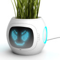 Digital Planter Lets Your Garden Taunt You