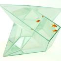 Fish Tank Friday: Infinifish