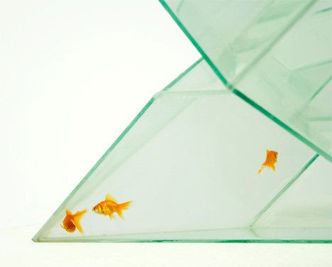Infinity Fishtank