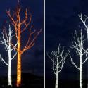 Lervik Design Light Tree