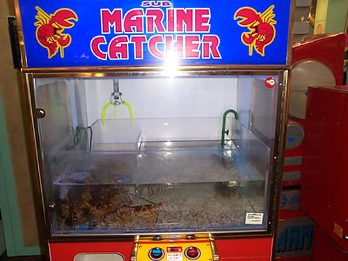 Sub Marine Catcher (Image courtesy Weird Asia News)