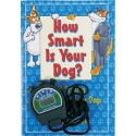 Find Out If Your Dog Is Smarter Than You