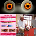 Custom Cloned Eyeball Lamps