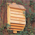 Use Bats To Combat Your Yard's Mosquito Population