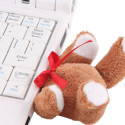 Teddy Bear USB Drive Now Available To The Masses