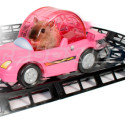Turn Your Hamster Into A Race Car Driver