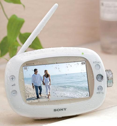 Sony XDV-W600 (Image courtesy Akihabara News)