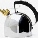 Harmonica Kettle Plays Music When It's Ready
