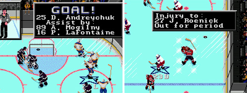 NHLPA Hockey '93 (Images courtesy NHLPA'93.com)