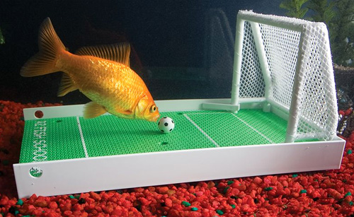 The Fish Agility Training Set (Image courtesy Hammacher Schlemmer)