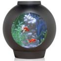 Fish Tank Friday: biOrb SpyOrb