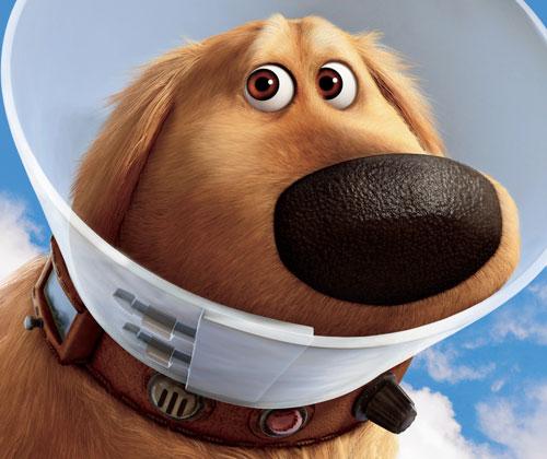 up_dog