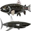 Alastair Gibson's Carbon Fiber Fish Sculptures