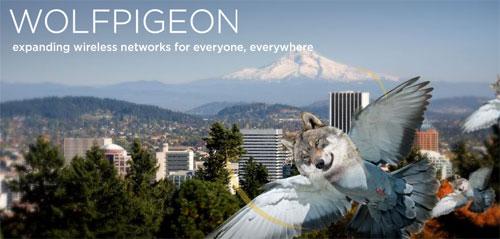 wolfpigeon