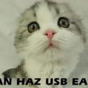 USB Kitteh Earz