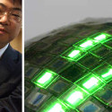 Researchers Develop Rubber-Like OLED Display