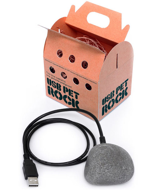 USB Pet Rock (Image courtesy ThinkGeek)