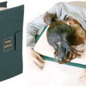 Workaholic Pillow Is The Only Textbook You'll Really Need For Higher Learning
