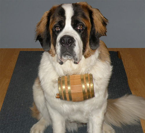 St. Bernard Dog Collar Barrel (Image courtesy KegWorks)