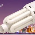 Motion Sensing CFL Bulb