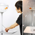 Poor Little Fish Sink – Conserve Water Or The Goldfish Gets It