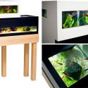 Fish Tank Friday: The Archiquarium